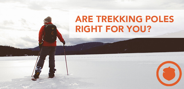 Pros and Cons of Hiking with Trekking Poles