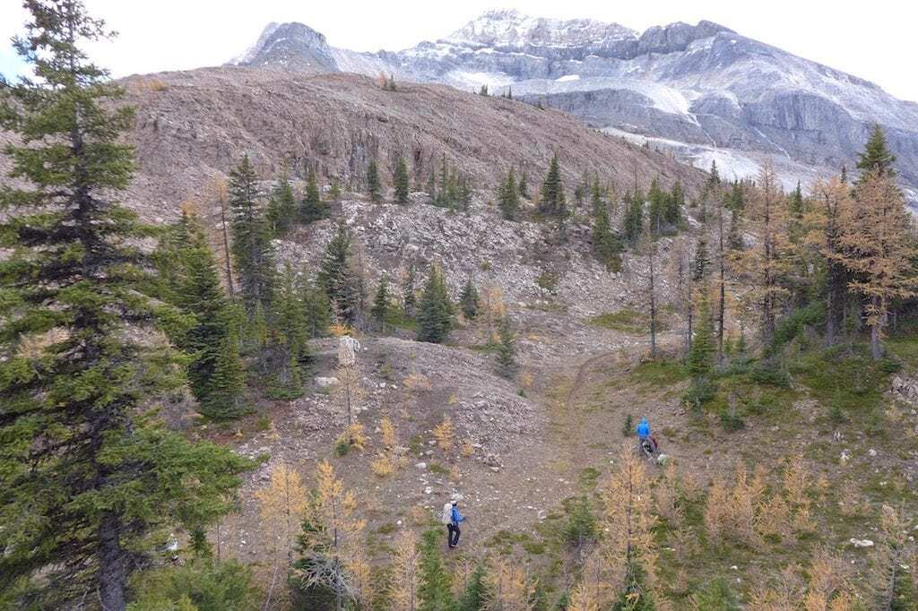 ball pass larch hike kootenay national park life outdoors