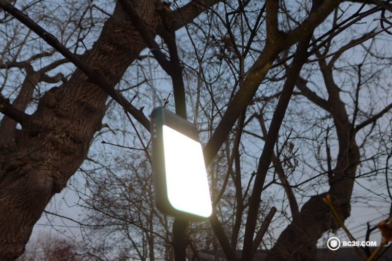 biolite powerlight mini on tree